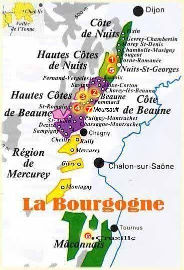 vin bourgogne biologique