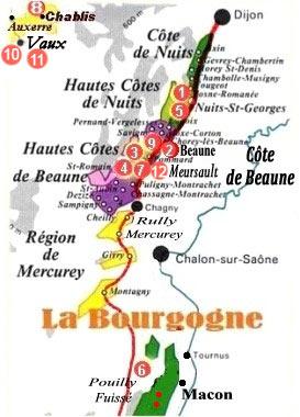 vin bourgogne bio